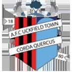 AFCUckfieldTown
